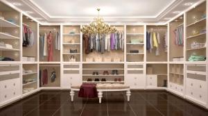 Large luxury closet