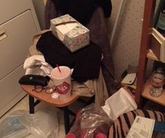 Before Pixs Lila Laundry Room